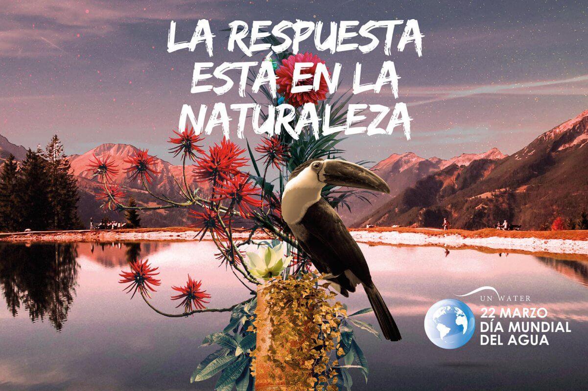 Día Internacional del Agua Hidrolit